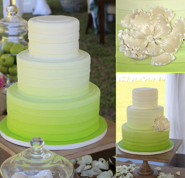 Cake Decorating Classes Raleigh Nc : Trendy Ombre Wedding Cake - Ambrosia Cake Creations