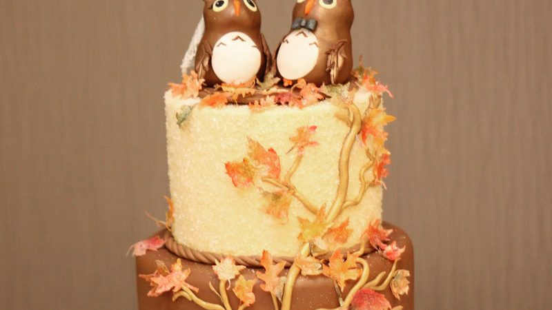 Owl wedding cake topper Archives - Ambrosia Cake Creations